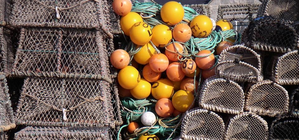 Lobster Pots and Floats Image for Greeting Card Department